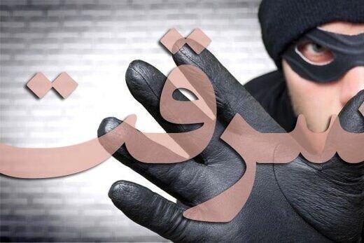 کاهش 29 درصدی سرقت در بوشهر