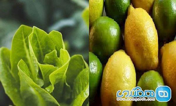 آیا لیمو یا کاهو ضد چین و چروک هستند؟