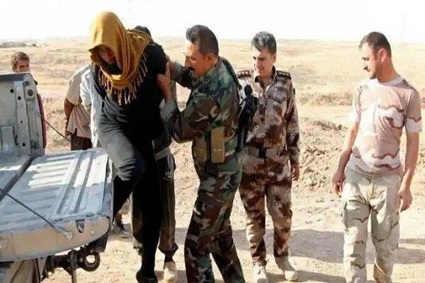 بازداشت یک سرکرده داعشی در جنوب بغداد