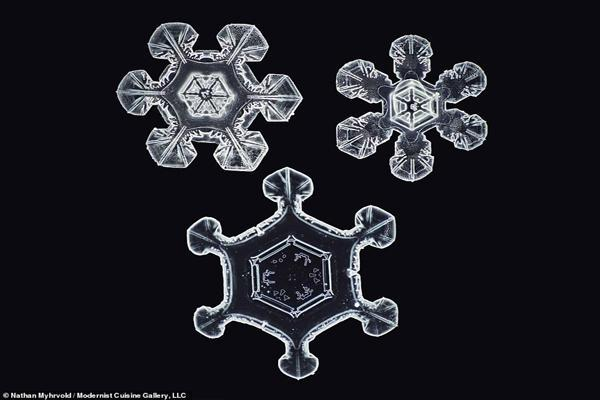 شکل واقعی دانه های برف در نزدیک ترین حالت ممکن (تصاویر)