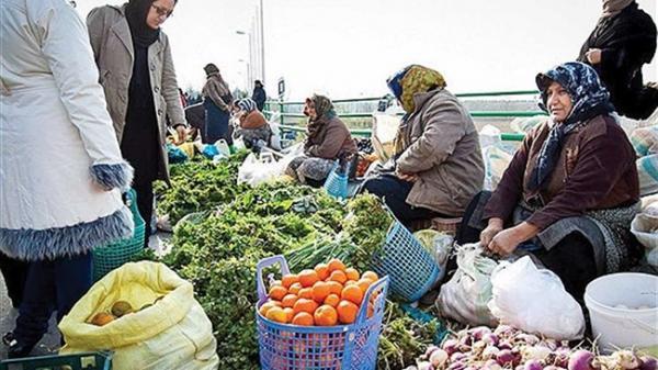 روستا بازار برای حذف واسطه ها راه اندازی می شود